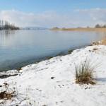 milder_winter