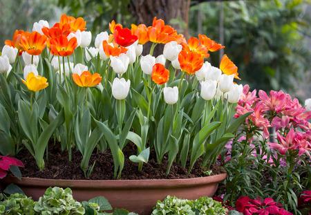 April, April Macht Was Er Will - Die Herausforderungen Der ... Terrasse Im Garten Herausvorderungen