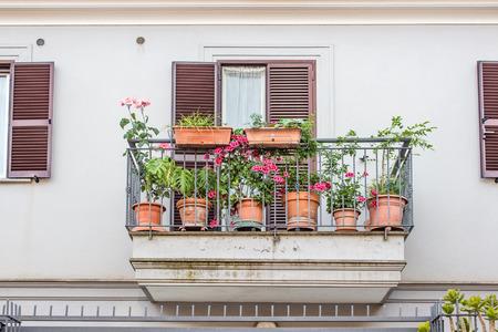 Wie Pflanzen auf dem Balkon und Terrasse im Herbst blühen