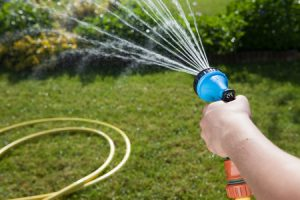 Gießen Will Gelernt Sein Wie Viel Wasser Braucht Mein Garten