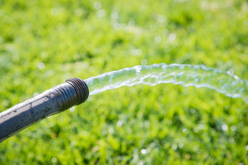 Gießen will gelernt sein – Wie viel Wasser braucht mein Garten wirklich?