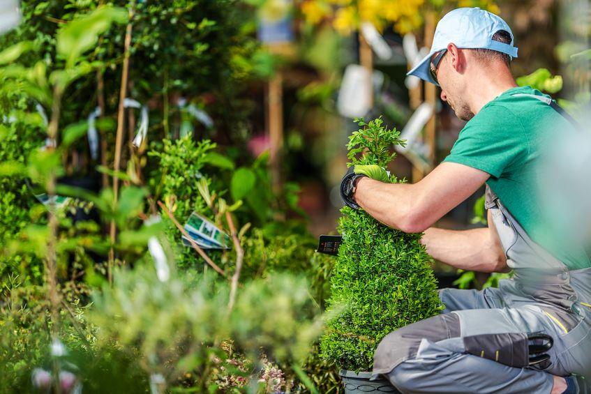 Tim Smit und sein Garten Eden