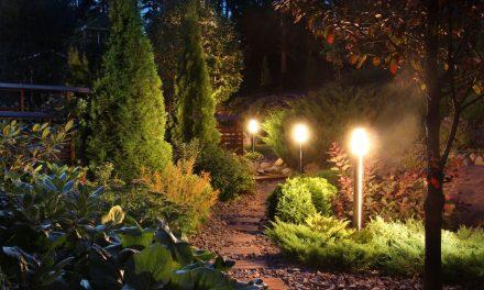 Schöne Gartenbeleuchtung für laue Sommernächte