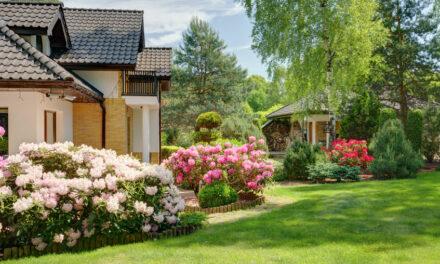 Was kostet ein Garten eigentlich?