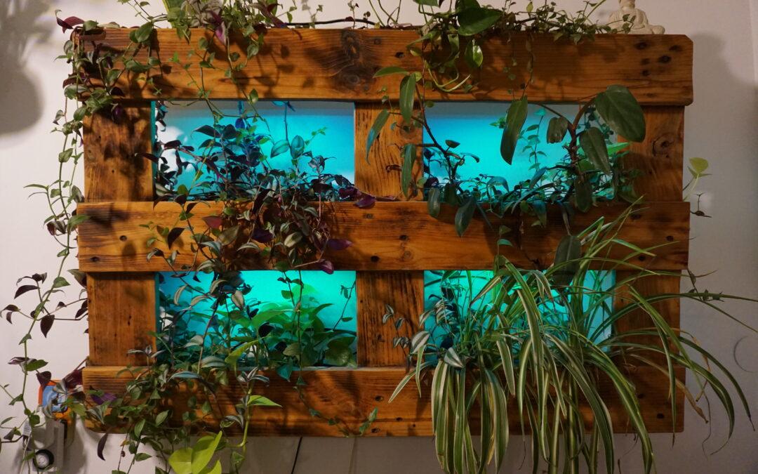 Gartenträume – Zwölf Fragen an Kunst-Schaffende. Heute mit: Marius Weitzer