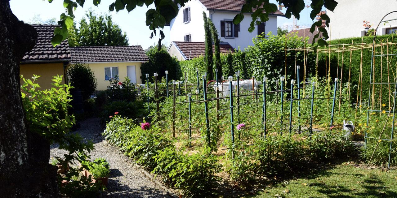Permakultur: das nachhaltige Gartenkonzept