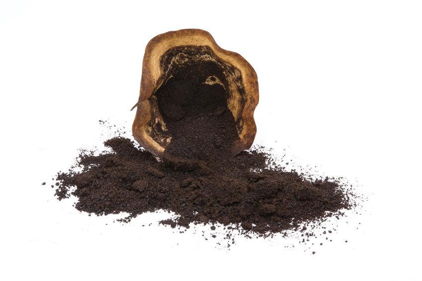 Kaffeesatz als Gartendünger nutzen
